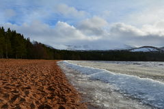 A build up of ice on the shore of Loch Morlich. Stock Images