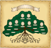 Build Your Own Family Tree. A primitive folk art style tree. Cameo ovals and name tags are individually grouped so that you may easily duplicate or remove as vector illustration