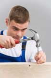 Builder hammering nails into board isolated on grey. Stock Images