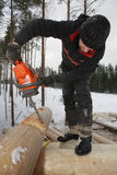 Builder handles timber, cutting a round saddle notch with chains Stock Photo