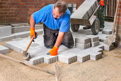 Builder laying new paving stones. Royalty Free Stock Photography