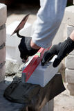 Builder lays Bricks Stock Images
