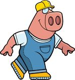 Builder Pig Stock Images