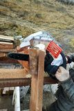The builder saws on the roof of the chainsaw. Roof rafters stock photos