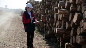 A builder in a white helmet and red jacket checks the number of logs. The truck is going past and making a lot of dust. Worker is making notes in documents stock video footage