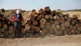 A builder in a white helmet and red jacket standing near pile of logs. stock video