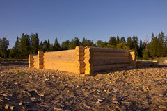 Building A New Log Cabins Stock Images