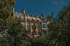 Building amidst trees and sunny blue sky with typical architecture of Paris. Royalty Free Stock Photography