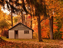 Building in autumn woods Royalty Free Stock Photo