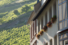 Building beneath hillside vinetard Royalty Free Stock Image