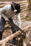 Building a cabin. A man sawing a log for a new cabin Stock Images