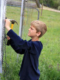 Building a Chicken Coop. Boy with hammer building a chicken coop Royalty Free Stock Photos