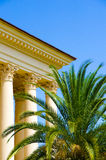 The building with columns. Near the theater with columns grows palm tree Royalty Free Stock Images