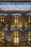 Building facade with light decoration at night with tree bough Stock Image