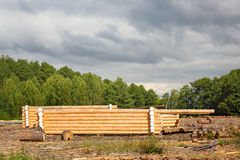 Building green buildings made of wooden logs Stock Photo