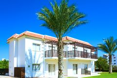 Building green palm plant Stock Photo