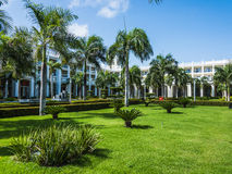 Building green palm plant. Part of the territory of the hotel building with green palm plant Royalty Free Stock Photo