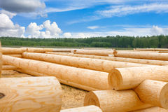 Building a house from wooden logs Royalty Free Stock Photo