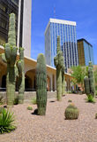 Building inTucson Royalty Free Stock Image