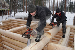 Building log cabin, loggers make notches on logs using chainsaws Royalty Free Stock Image