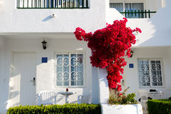 The building of luxury villa Royalty Free Stock Photography