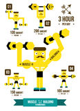 Building muscle & Fitness Infographics. Royalty Free Stock Images