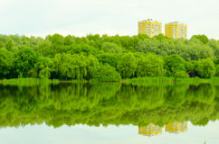 Building and nature. Residential knowledge are located near water Royalty Free Stock Photos