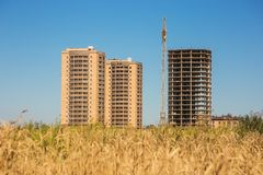 Building of new houses among wheat field in summer Royalty Free Stock Photography