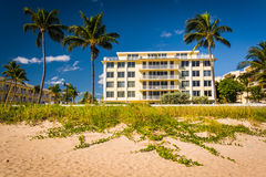 Building and palm trees along the beach in Palm Beach, Florida. Stock Photo