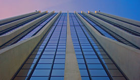 Free Building Perspective Royalty Free Stock Image - 5486226