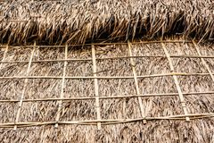 Straw roof closeup texture plant building. Building plant dry home pattern stock image