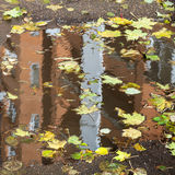 Building is reflected in puddle with fallen leaves Royalty Free Stock Photography