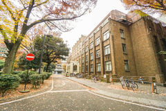 Building and road inside Tokyo University in autumn season taken in Japan Royalty Free Stock Photography