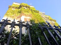 Building shot up. Fence building Ivy covered blue sky's greenery Royalty Free Stock Photography