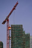 Building site. Tall red crane developing at the building site Stock Photos