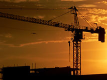 Building site 5. A building site at sunset with bird flying nearby Stock Image