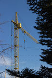 Building tower yellow crane on the background of blue sky and pi Stock Photos