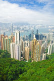 Building tree at Hongkong. View of skyscrapers in Hong Kong from Victoria peak Royalty Free Stock Photo