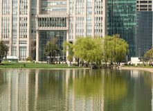 Building tree pond Stock Photography