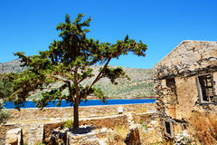 The building and tree on Spinalonga Island Royalty Free Stock Photo