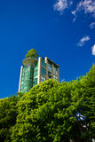 Building Through Trees. High rise towering over trees Royalty Free Stock Photography