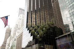 Buildings on 5th Avenue, New York Stock Images