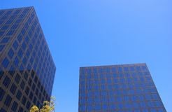 Buildings. Two black corporate buildings with green tree and blue sky Royalty Free Stock Images