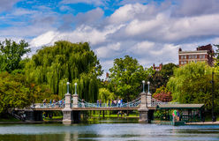 Buildings and bridge over a pond in the Boston Public Garden. Royalty Free Stock Image
