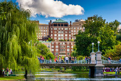 Buildings and bridge over a pond in the Boston Public Garden. Stock Images