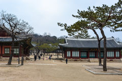 Buildings at Changgyeong palace area1 Royalty Free Stock Photos