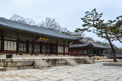 Buildings at Changgyeong palace area3 Royalty Free Stock Image