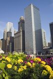 buildings chicago στοκ εικόνες