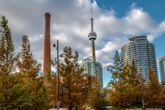 Buildings in Downtown Toronto with CN Tower and Autumn vegetation - Toronto, Ontario, Canada. Buildings in Downtown Toronto with CN Tower and Autumn vegetation Royalty Free Stock Images