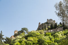 Buildings in Eze Rising from Treetops Stock Photo